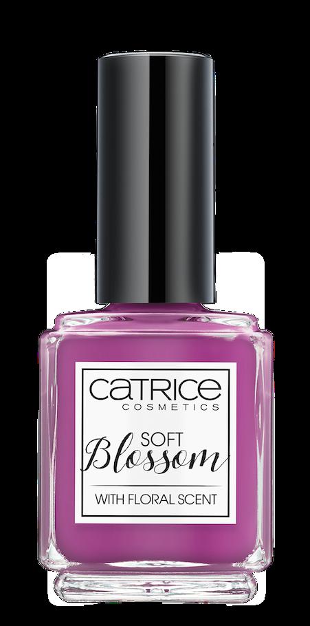 Catr_Soft-Blossom_NP02