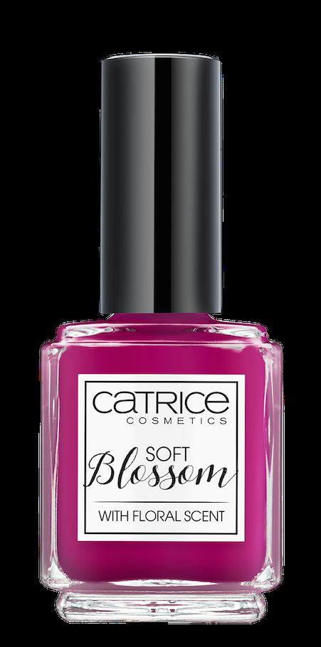 Catr_Soft-Blossom_NP03
